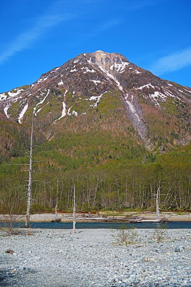 焼岳(やけだけ)は飛騨山脈の主稜線上にあり、長野県と岐阜県にまたがる標高2,455 mの活火山で、別名は硫黄岳。常時観測対象の火山に指定され、日本百名山に選定されている。 山域は1934年(昭和9年)12月4日に、中部山岳国立公園の特別保護区に指定された。<br /><br />焼岳は隣接する白谷山、アカンダナ山、割谷山と共に焼岳火山群を構成する。この火山群中で現在も活動をしているのが焼岳である。有史後の噴火活動は水蒸気爆発がほとんどで泥流を生じやすい。焼岳は飛騨山脈の中では最も活動の激しい活火山で、約2000年前には最新のマグマ噴火を起こしている。焼岳の溶岩は、粘性が強い安山岩からデイサイト質の溶岩ドームおよび溶岩流とそれに伴う火山灰と火山岩の堆積物で構成される。水蒸気噴火に伴い泥流として土砂を流すことがある。最近では、2011年、2014年などたびたび地震群発を観測している。 <br />(フリー百科事典『ウィキペディア(Wikipedia)』より引用)<br /><br />焼岳 については・・<br />https://www.kamikochi.or.jp/learn/spot/%E7%84%BC%E5%B2%B3<br /><br />大正池 については・・<br />https://www.kamikochi.or.jp/learn/spot/%E5%A4%A7%E6%AD%A3%E6%B1%A0