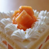 函館赤肉メロンショートケーキを食べに浦和のパインズへ