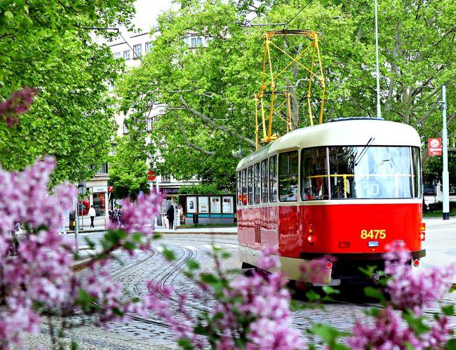 転職期間を利用し、初めての一人旅に出ることにしました。<br />旅行期間は思い切って3週間。<br />チェコ、オーストリア、ポーランド、ちょっぴりドイツを周遊しました。<br />最初に訪れる都市は、古き良きヨーロッパを感じる美しいプラハの街。<br />