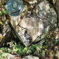 信州令和42 上高地g ウェストン碑あたり 梓川-右岸 ☆霞沢岳-六百山を眺め/緑鮮やか