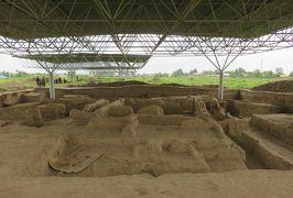 2019春、ウズベキスタン等の旅(27/52):4月25日(13):ペンジケント(13):サラズム遺跡、発掘された遺跡
