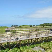 特典航空券で行った網走、知床・・道東から札幌までドライブの旅 5日間