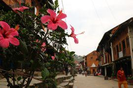 心に染み入る美しい国 23年ぶりのネパール旅(6)開発から忘れ去られた村バンディプル