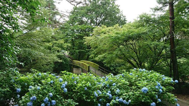 吹割の滝が見たいと夫が言い出したので、早速、7月の連休を利用して行くことを計画。<br /><br />本当は、群馬なら、日帰りで行ける距離。<br />天気が良い日に行くに越したことはないのですが、<br />群馬に行くなら、私も、テレビ(帰れマンデー)で見て気になっていた赤城神社や覚滿淵に行ってみたいし・・<br />ということで、1泊することにしました。<br /><br />宿泊は、老神温泉と考えていたのですが、<br />希望していたホテルが、ちょっとの差で満室になってしまい、<br />やむなく、近辺のホテルを探して、猿ヶ京温泉で良さそうな所を見つけてはみたのですが、<br />夫はどうも気に入らない様子。<br /><br />結局、ホタルが見られるかもしれないという理由で、<br />たくみの里のペンションに決定。<br />旅行を楽しみにしていたのですが、梅雨明けが微妙な7月の中旬、<br />お天気はどうかな~と心配していた通り、<br />しっかり梅雨空の中の旅となってしまいました。<br /><br />では、1日目です。