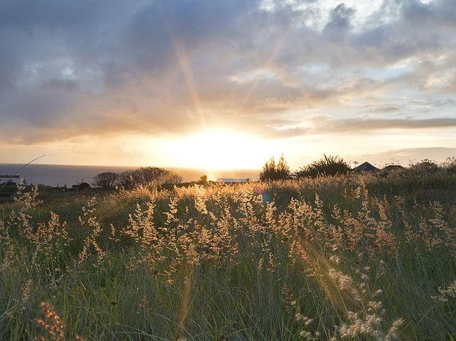 7月初旬に初の南米旅行、イースター島に6泊7日で旅行して来ました。この時期南半球は冬の季節でオフシーズン。イースター島は雨季に当たる為、お天気が心配でしたが、一日中雨が降ったのは1日だけで、あとは曇ったり雨がパラついたりはあったものの、比較的良い天気でした。気候も朝晩は寒くなりましたが、日中は日差しが強く、長袖Tシャツにウィンドブレーカーで問題なく観光出来て過ごしやすかったと思います。<br /><br />宿泊ホテル:Hare Swiss<br />      Cabanas Te Maori<br />利用レンタカー会社:Insular(https://www.rentainsular.cl)<br />          Oceanic(https://rentacaroceanic.com)<br />主要移動手段:徒歩、スクーター、レンタカー