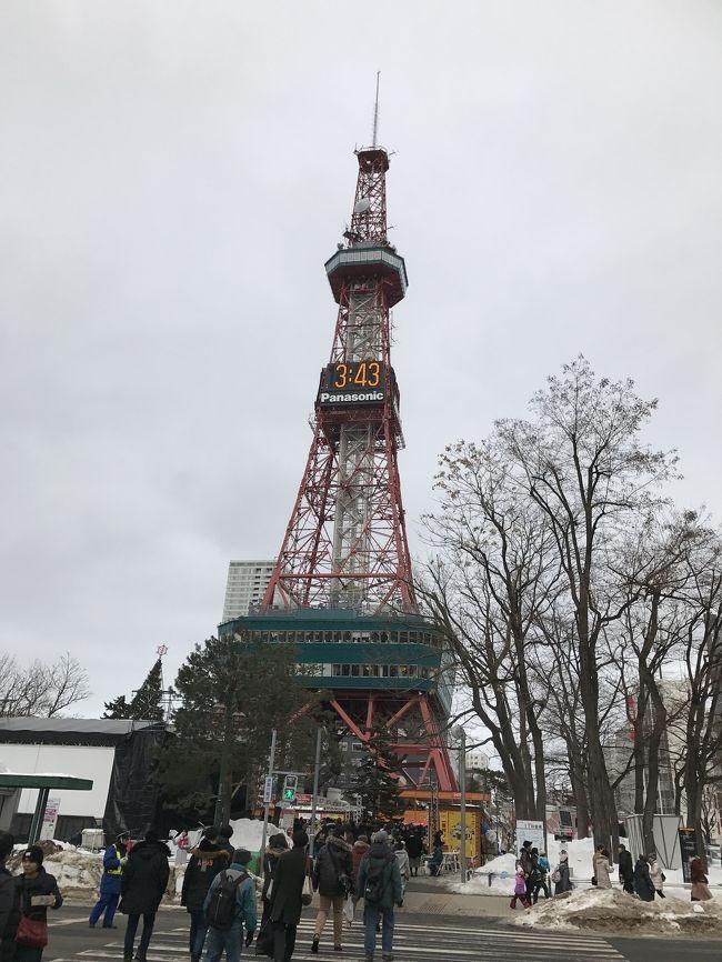 年末年始旅行で札幌に行ったのに、またまた雪まつりでサッポロに行きました。<br />たくさんの雪像があり、見飽きることもなく回りました。<br />大通りには氷雪があり、また違った雰囲気で良かった。