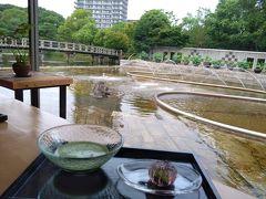 女子旅。マイルカフェでランチ、白鳥庭園(お抹茶と和菓子、鯉に餌やり)、熱田神宮を散策してきました
