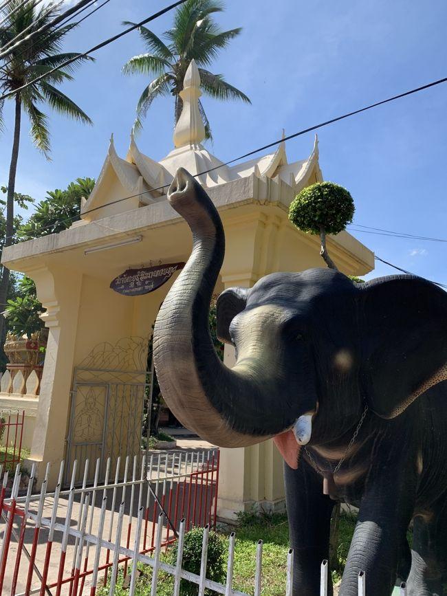代々木公園で開催されていたラオスフェスで飲んだビアラオの味が忘れられず、いつかは行こうと決めていたラオス。<br /><br />ラオスって何があるの?と、みんなに聞かれましたが、私も知らない…<br /><br />とりあえず、ビアラオが堪能出来ればOKなわが家(笑)<br /><br />タイ国際航空が激安価格(エコノミークラス往復4万円)でチケットを出したので、さっそくポチっとな。<br /><br />はてさて、どんな旅になるのでしょうか?