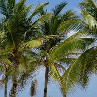 Hola! カリブ海の碧い海とマヤ遺跡♪ vol.1 ハイアット・ジラーラ・カンクン 大人限定オールインクルーシブ
