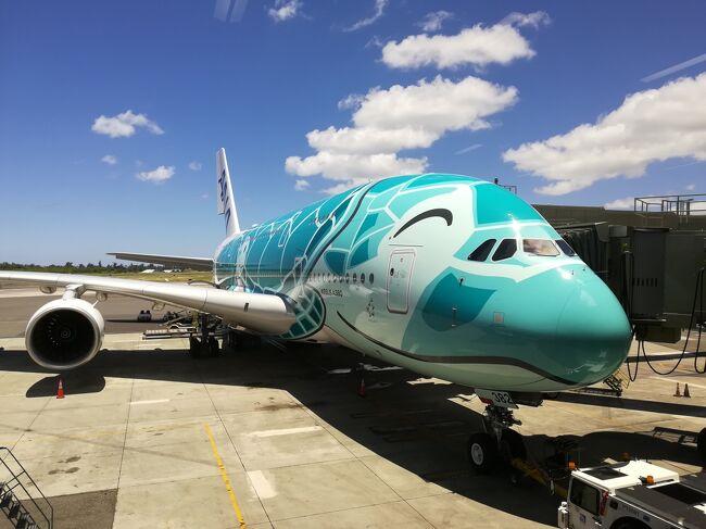 フライング ホヌ ファースト クラス ANAファーストクラス(A380)搭乗記(2) 機内食、アメニティなど徹底紹...