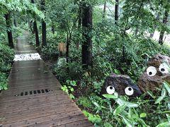 梅雨なのに絶景を探し求めて - 山梨&新潟【3】入って良かった?インディペンデンス・ボードウォーク