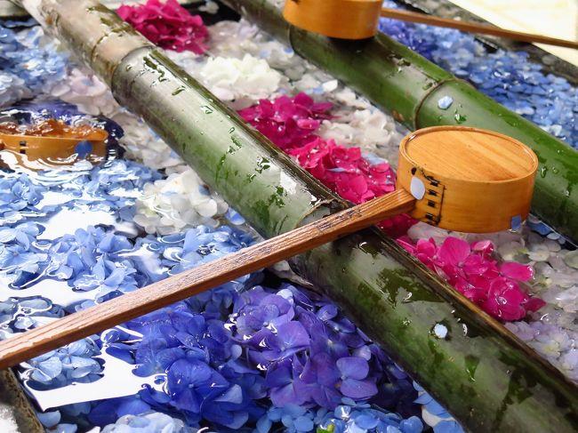 京都・大阪へ フォトコン入賞ご褒美旅行 (1)花手水で話題の楊谷寺に行ってみました