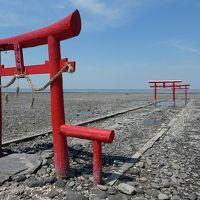 またまた佐賀旅 1日目 海中鳥居を探す。竹崎カニを食す。
