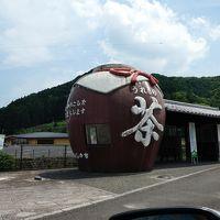 またまた佐賀旅 3日目 嬉野温泉で土瓶と茶壺を探す。そして湯豆腐懐石を食す。