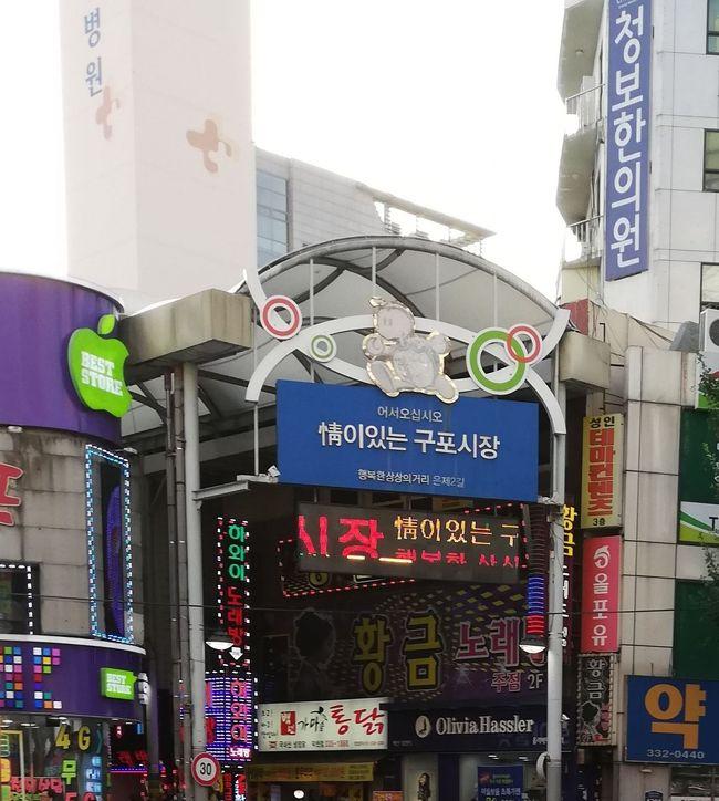 最近はソウルばかりなので、釜山は9か月ぶり。<br />釜山市内滞在は1年4か月ぶりです。<br />月初にソウルに行ったので、釜山には特に用はなく、<br />キャンセルしようかと考えていたところ、<br />済州航空のシートマップを見ると、<br />往復ともNEW CLASS設定がある機材であることが判明。<br />無理していくことにしました。<br /><br />釜山の空港に着いて、ちょうどタイミング良く市内バスが来たので、<br />行先を確認せずに乗り込み、亀浦市場にたどり着きました。<br />「情がある亀浦市場」という名のとおり、庶民的で風情がありました。<br /><br /><br />ルート<br />成田3T 14:20 → 釜山16:307C1153  <br />釜山10:40 →成田3T12:457C1154<br /><br /><br />航空券(済州航空往復、2018年冬のスーパーセールで購入)<br />成田-釜山 運賃500円、燃油1300円、諸税1540円<br />釜山-成田 運賃3000円、燃油1300円、諸税2330円<br /><br /><br />