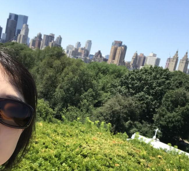 実は余りニューヨークには関心が無かった私。美術館は好きとはいえまあ差し当たって今行かなくてもいいか…という場所だったのですが、昨年7月、まとまったマイルが貯まったのでさあ特典航空券を!と考えた時、かなりのマイル数、折角ファーストクラス分あるのなら一番フライト時間が長い便を選ぼう!!とあっさりニューヨーク行きを決定(笑)<br />それから一年かけてじっくり計画し、念願のファーストクラス&ビジネスクラス、そしてニューヨークの美術館、ミュージカルを楽しんで参りました!!