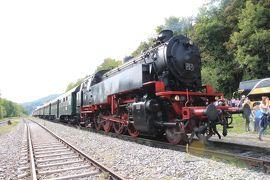 かわいい村巡り☆初秋のドイツ・黒い森とフランス・アルザス、木組みの家を求めて 4日目 その2 ティティ湖&黒い森鉄道