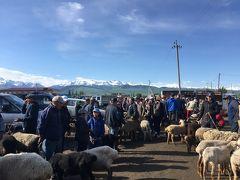 家畜市(カラ・コル)【ウズベキスタンとキルギスの1ヶ月の旅6】