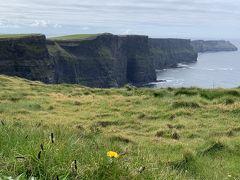 2019.04-05・GWアイルランド&デンマーク7日間の旅【4】〜モハーの断崖からゴールウェイの町歩き弾丸日帰りツアー〜