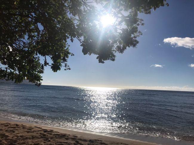 ハワイ3日~帰国までです。<br />「DEAN&amp;DELUCA」で限定バックの購入からスタートです。<br />