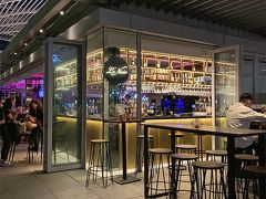 2019年7月①シンガポール2泊4日の旅☆1日目~夜のガーデンズ・バイ・ザ・ベイ&カジノで…  インターコンチネンタルシンガポール
