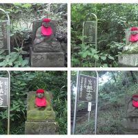 高幡不動尊金剛寺: 関東三大不動の一つで,境内には幾つかの塔堂,脇の丘には山内八十八ケ所巡拝路あり