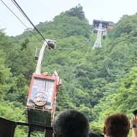 マダム二人の修学旅行その3〜はとバスでシャインマスカット&桃のダブル狩りと河口湖富士山パノラマロープウェイ