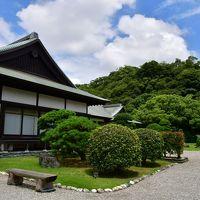 徳島県:夷山城、牛岐城、徳島城