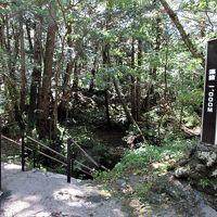 2018年10月 はとバス「富士山麓周遊」 その3 富岳風穴に入りました。