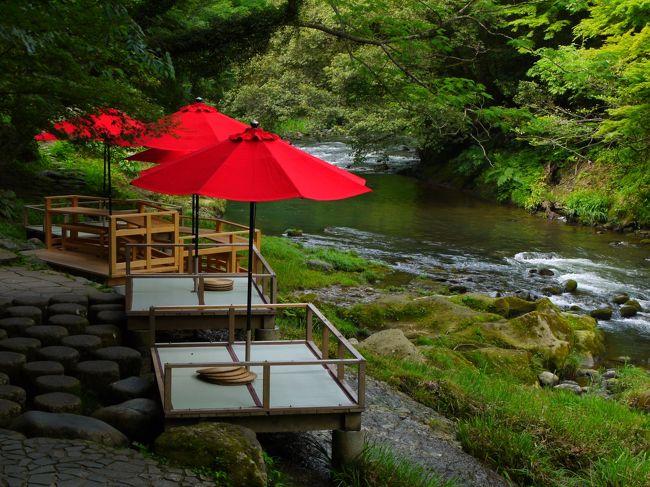 父の誕生日祝いも兼ねて前々から計画してた徳島県のとあるキャンプ場でのキャンプは雨で流れ・・・<br />代わりに恐竜博物館見学と、ついでに山中温泉に泊まることにしたS家。<br /><br />博物館でけっこうゆっくり見学したあとは、「千古の家」とか寄り道しつつ、一路山中温泉へ~<br /><br />宿はブッキングドットコムで安いプランを見つけた「セレクトグランド加賀山中」。<br />もともと予約してたキャンプ場が1泊4000円(3人で)やったことを思うと山中温泉はかなりグレードアップしてるけど、恐竜博物館近くのキャンプ場がなぜか高騰してて、山中温泉の宿で1泊2食付きの方がずっと安かったんよね。<br />父も徳島じゃないならキャンプは嫌だとか言い始めるし、ほなもぅホテルとっちゃうよーっというわけで、急遽決まったのでした。<br /><br />温泉で癒され、トランプ大会で爆笑し、翌日は温泉街とすぐそばの鶴仙峡をぶらり♪<br />結局すごいいい天気で北陸は雨にも降られず、<br />なかなか楽しい週末やったな(´▽`)<br />