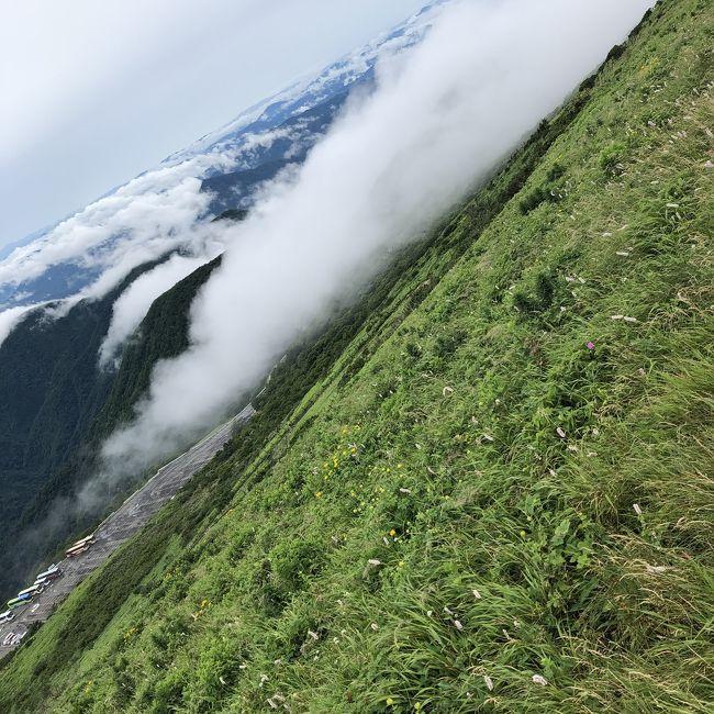 初、日本百名山登山チャレンジ。<br />朝、自宅から車で&#128663;伊吹山登山口へ。山頂まで、3時間ちょっと。急登ではないものの、登りごたえある坂道続き、雨上がりの朝だったので、雨水が乾いていない、ぬかるみもありました。<br /><br />花の山!高山植物がたくさん咲いていました。<br /><br />山頂には、伊吹ドライブウェイで車でも登れるため、眺めとお花を見に来る人で、山頂は賑やか。<br /><br />降りるころななは、道も乾いて歩きやすい下りでした。<br /><br />帰りは、登山口から2キロの、伊吹薬草の里文化センターの立ち寄り湯でさっぱり。醒ノ井駅横の、野菜??産直で、野菜と、美味しい水、いただいて帰りました。<br /><br />