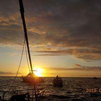 JAL直行便で行くハワイ島4泊6日の旅 VO.1  ~到着日からマンタナントツアーに参加。マンタを目の前で見る事が出来た~