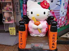 梅雨真っ只中の高知観光(2) 高知城、ひろめ市場、はりまや橋、高知龍馬空港