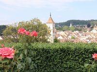 スイス 街歩き シャフハウゼン散策