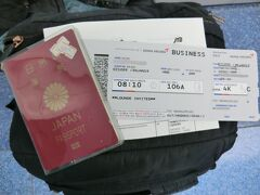 第48回海外旅/東南アジア鉄道紀行2019年冬・その1.アシアナ航空ビジネスクラスでソウルへ。