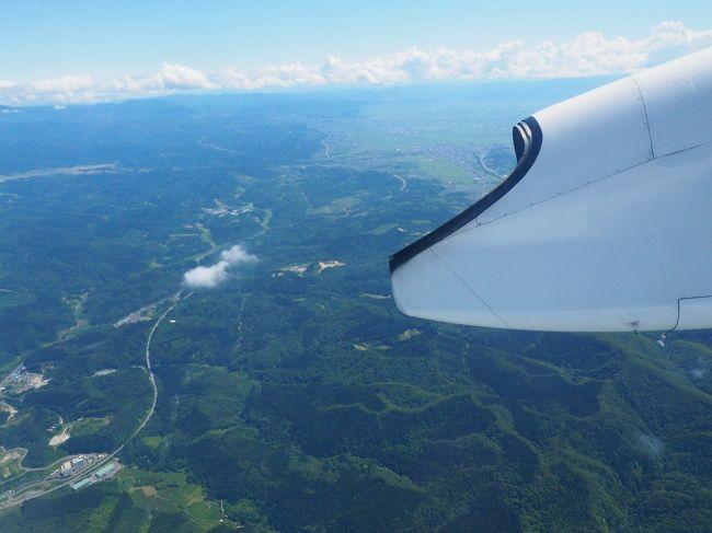 あっという間に帰りのフライトです。青森空港からはANA1854便で帰ります。行きと同じくプロペラ機の旅。今度は日中なので景色がよく見えそう。2時間の空の旅、楽しんでいきましょう。<br /><br />2019/11/24投稿