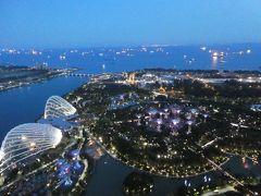 雨季雨季シンガポール 1日目 チャイナタウンのあとマリーナベイサンズへ。食べてばかりのような。