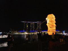 雨季雨季シンガポール 2日目 毎度のムスタファでの買い物。食べて飲んで。そして輝くマーライオン?