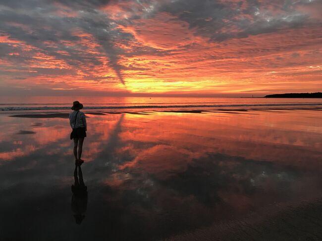 サーフィンをするものにとっては、一年中コンスタントにサーフィンができるという宮崎は憧れの地<br /><br />鹿児島に引っ越してきて、7ケ月で初めて宮崎までサーフィンに出かけてみました<br /><br />ホテルは1週間前に予約したANAホリディインリゾート宮崎<br /><br />こちらはホテルの前のビーチにすぐ出られて、敷地内にシャワーがあり、館内にはサーフスクールもやっているショップがありレンタルもできます<br /><br />自分の板を持ってくる人には1Fにボード置き場も設置され、ボードラック付き自転車レンタルもあるという、サーファーにとっては夢のようなホテルです<br /><br />おまけに、ジャグジー付きのプール(有料)があり、洗い場もたくさんある大きな展望風呂、露天風呂もあって、お土産ショップはコンビニ並みの品揃えもあって、カップ麺用のお湯ポットまで用意されています<br /><br />ビーチ用のタオルはないので、自前で持っておく必要がありますが、海から上がって館内に入る時には、体を拭く用のタオルは置いてあります<br /><br />部屋タイプは下の階は畳の和室、上の階はベッドの洋室になっており、海が見えないロビー側の部屋なら安くなっています<br /><br />朝食のブッフェは6時30分からオープンしているので、いっときに混み合うこともありませんでしたし、品揃えは結構豊富なので連泊しても楽しめます<br /><br />夕食のブッフェもまずまずの品揃えで、満足できました<br />2日目は、ブッフェを中華に切り替えてもらい、コースをいただきましたが、こちらも美味しかったです<br /><br />暗くなるとホテル前の水路、滝周辺がライトアップされて綺麗ですし、水路に浮かぶ白鳥のモーター付き浮き袋は、子供に人気で行列ができていました<br /><br />朝は5時前に起きて、日の出を見るためにビーチに出てみましたが、浜辺に薄く広がった海水に赤く染まった空が投射されて、とても綺麗でした<br /><br />そのあとは、青島神社まで歩いて参拝し、島の周囲を歩いてホテルに戻ると、朝食タイムとなりました<br /><br />青島神社の近くのブイに囲まれた所だけが海水浴エリアとなっているので、それ以外は、延々とシーガイア方向まで続くビーチはどこでもサーフィン可能です<br /><br />青島神社近くの浜辺には「青島ビーチパーク」という5年前にオープンした屋台村のような一帯があり、海外のビーチパークのような雰囲気を醸し出しています<br /><br />ホテルの宿泊客は、普通の観光の団体客もあれば、サーフィンだけしに来ている家族連れなども多かったです<br /><br />スタッフも皆若くて明るく活気があって、お気に入りのホテルとなったので、ポイントがたまったり、色々と得点のあるIHG リワードクラブにスマホから入会し、早速次回の予約もしました<br /><br />ビーチ自体は近くの木崎浜ほどは高い波になりにくく、非常に遠浅なので、家族連れのサーファーが子供達に教える姿は微笑ましく、ビーチ全体にガツガツとサーフィンをするのではなく、ほのぼのとした柔らかい空気が流れていて、とても心地よかったです<br /><br />この後、何回もいきましたので、興味のある方は、さらに<br />「サーフ天国 宮崎青島10月3回、11月2回もサーフトリップしちゃった」<br />https://4travel.jp/travelogue/11561252<br />の旅行記もご覧ください