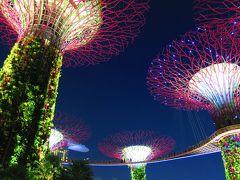 2019.07 LCCスクートで行く、関空発シンガポールの旅�