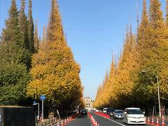 都内紅葉散歩 Vol.1[神宮外苑いちょう祭り編](2018年12月)