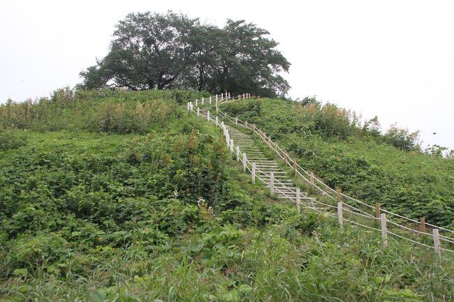 埼玉県名前の由来、発祥の地「さきたま古墳公園」を散策した。<br />街中にに古墳が多々ある、韓国慶州(きょんじゅ)を思い出した。<br />https://4travel.jp/travelogue/10686957<br />これら古墳が作られた時代は外国(東アジア)から渡来人が来て大陸文化が日本へ伝わった。「図解日本史」九州高等学校歴史教育研究協議会発行では【6世紀の加羅、7世紀に百済・高句麗が滅亡し、韓民族の王族や文化人が亡命した。進んだ土木・灌漑技術や仏教・儒教を伝え、飛鳥文化形成に貢献した。】との事である。<br />