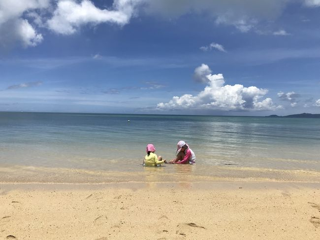 長女が小学生に上がってからは、夏休みのまとまった休みに旅行に行くようになった我が家。昨年は初ハワイだったので今年は日本がいいなとなりました。<br />夏なので海やプールを楽しみたいから初めての沖縄に決定したはいいけれど、主人の友人が行って良かったとオススメの小浜島はいむるぶしに主人の強い要望で決定に。<br />小浜島ってどこ?初沖縄なら本島に行こうよ!離島ならよく聞く宮古島とか石垣島とか有名なとこに、という私の要望は叶わず、、でしたが結果大満足な旅行になりました。<br />自転車で島内を一周できるほど小さな島で、ホテル、集落以外ほぼ自然しかありませんでした。あるのは、海、空、小さな山、サトウキビ、牧場、星空、動物、、<br /><br /><br /><br /><br />旅行の日程<br />7月21日(日)~7月26日(金)<br /><br />家族構成4人<br />父親<br />母親<br />長女9歳<br />次女4歳<br /><br /><br />