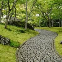 梅雨旅・箱根〜苔の庭園と強羅の濁り湯〜