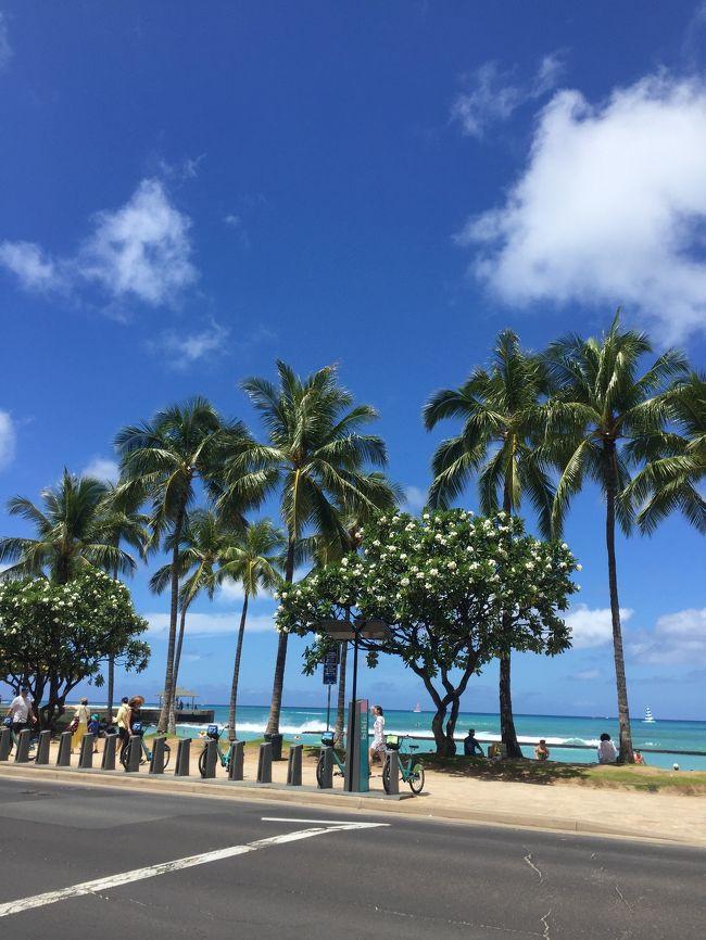 3歳になったばかりの息子を連れてハワイに行ってきました!<br /><br />飛行機や食事の心配もありましたが、往復とも乗り切り、楽しいハワイ旅行になりました!
