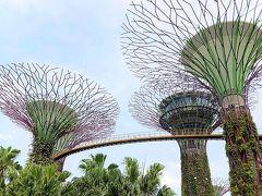 2019 シンガポール・ビンタン島 母子3人旅  ー 6、7日目、やっとマーライオン、そしてお土産