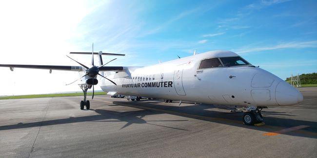 ちょっと早めの夏休み。<br />今回は去年ふるさと納税をしてもらった「JALふるさとへ帰ろうクーポン」を利用して航空券を買いました。<br />去年キャンペーンをしていた沖縄県のとある自治体がなーんと返礼率が50パーセントだったのですよ!(現在は受付終了)<br />ダンナ納税分だけで航空券を買い、(ちょっと足した位)当初、沖縄本島に行こうと計画していたのですが、ふと確認したらクーポン期限が今年9月半ばまで。<br />これはいかんと計画を練り直し、残っていた私の分で那覇~久米島分の航空券も手配できました。<br />いつも夏の久米島ツアーは高いのであきらめていましたが、やっと行けることに。<br />う、うれしい~!(^^)!<br /><br />4泊5日の旅行記です。更新が超ノロノロですが、気長にお付き合いくだされば幸いです。<br /><br />イーフビーチホテルに4泊宿泊。<br />Agodaにて最安値予約。(予約の際にいろいろ心配な点がありましたが。本文にて後述)<br />デラックスツインオーシャンビュー指定、朝食付き。<br />一人一泊 13,044円