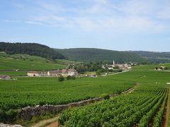 フランス アルザス、ブルゴーニュ地方のワインツアーとパリ(4) ブルゴーニュ地方 ボーヌ 半日ワインツアー