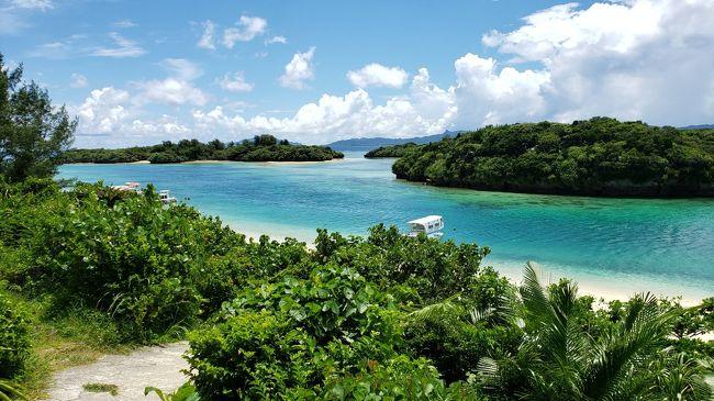 家族4人の初石垣島旅行。子供小学校4年生の男の子と2歳の女の子。<br />飛行機はANAマイルで3人分をカバー。下の子は、母親の膝の上で。<br />近場海外と迷いましたが海!プール!を優先して石垣島へ。