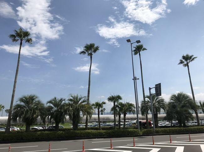 夏休みは宮崎に旅行しました!<br /><br />運よく?運悪く?インターハイが南九州で行われているさなかで、<br />全国の高校生と宿泊をともにすることになりましたが(苦笑)<br /><br />まずはブーゲンビリア空港から青島、白浜海水浴場に向かいます。